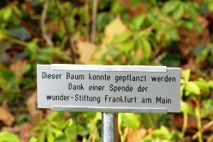 Apfelbaumpflanzung_Stunz-Zentrum_003